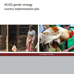 ACGG gender strategy: Country implementation plan now available