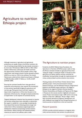 Bridging the gap between agriculture and nutrition in Ethiopia andTanzania
