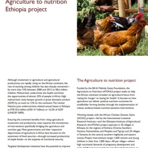 Bridging the gap between agriculture and nutrition in Ethiopia and Tanzania