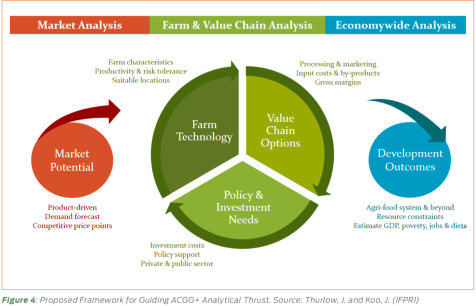 Proposed Framework for Guiding ACGG+ Analytical Thrust. Source: Thurlow, J. and Koo, J. (image credit: IFPRI)